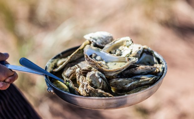 Grilled Oysters with Flavoured Butter