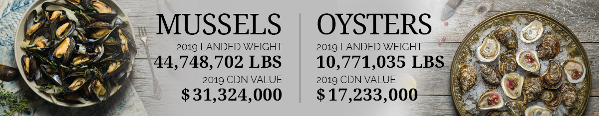 Mussels & Oysters Statistics 2019