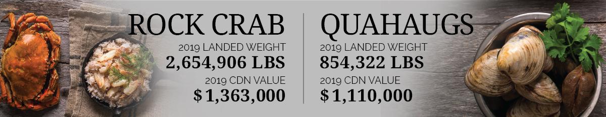 Rock Crab & Quahaugs Statistics 2019